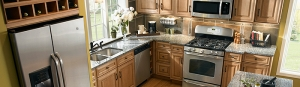 Domestic appliances installation and repair